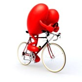 16926710-heart-with-arms-and-legs-riding-a-bicycle-3d-illustration