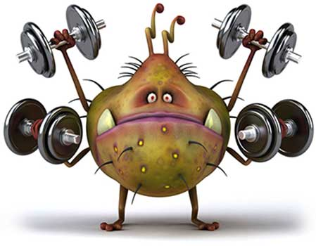 gyms in covid 19 germs